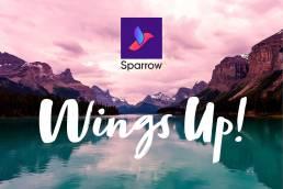 logo design branding travel start up 11