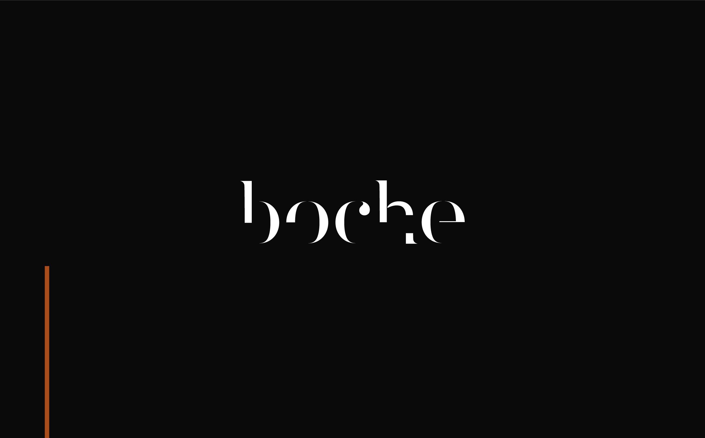Shopify e-Commerce Website Development Branding Boche Design Logo